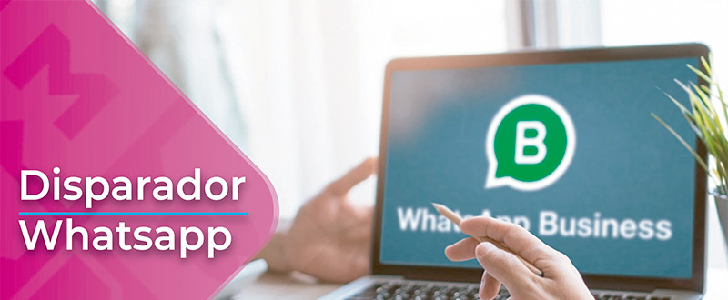 Disparador Whatsapp
